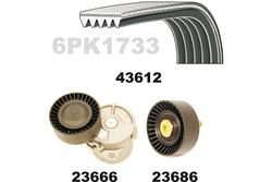 Mapco 23686 Cinghia Poly-V Galoppino//Guidacinghia